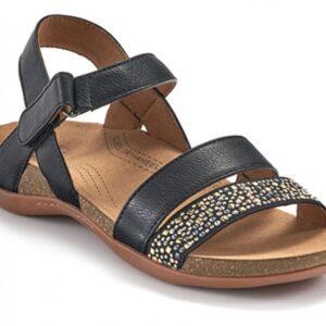 Scholl Alpena Black Womens Sandal